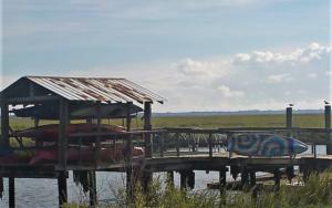 Southern Tides Newsletter
